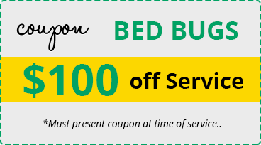 Bed Bugs Removal Las Vegas